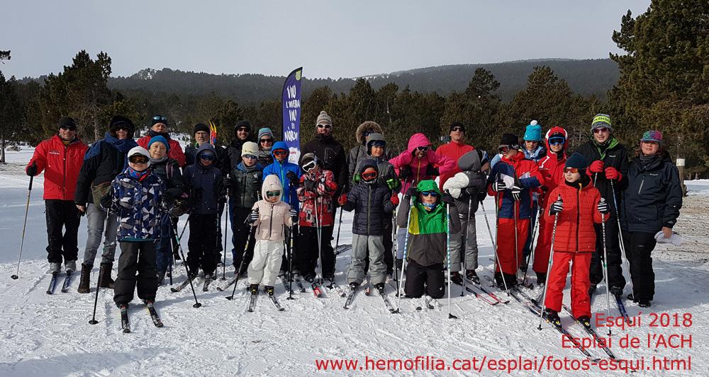 7186e53265d Este fin de semana hemos podido disfrutar de la actividad más  extraordinaria del invierno: la salida a la nieve para practicar esquí de  fondo con los niños ...